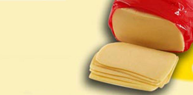 גבינה צהובה / צלם: יחצ